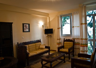 Ekko Apartments and Guest House Addis Ababa One Bedroom Living Area